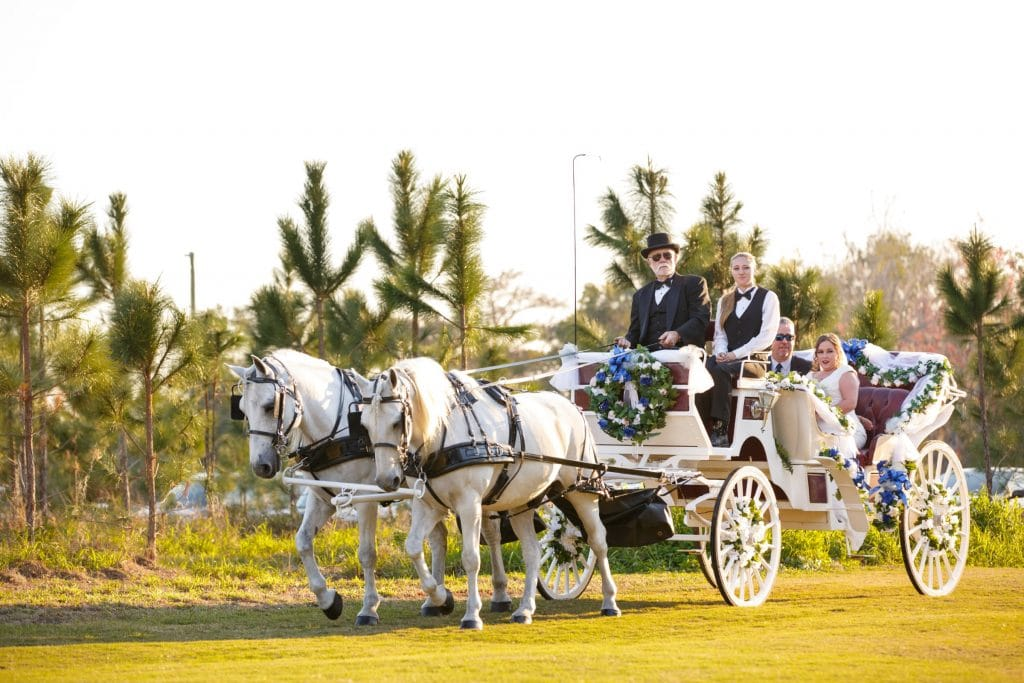 Marina del Rey - bride's entrance with horse drawn carriage