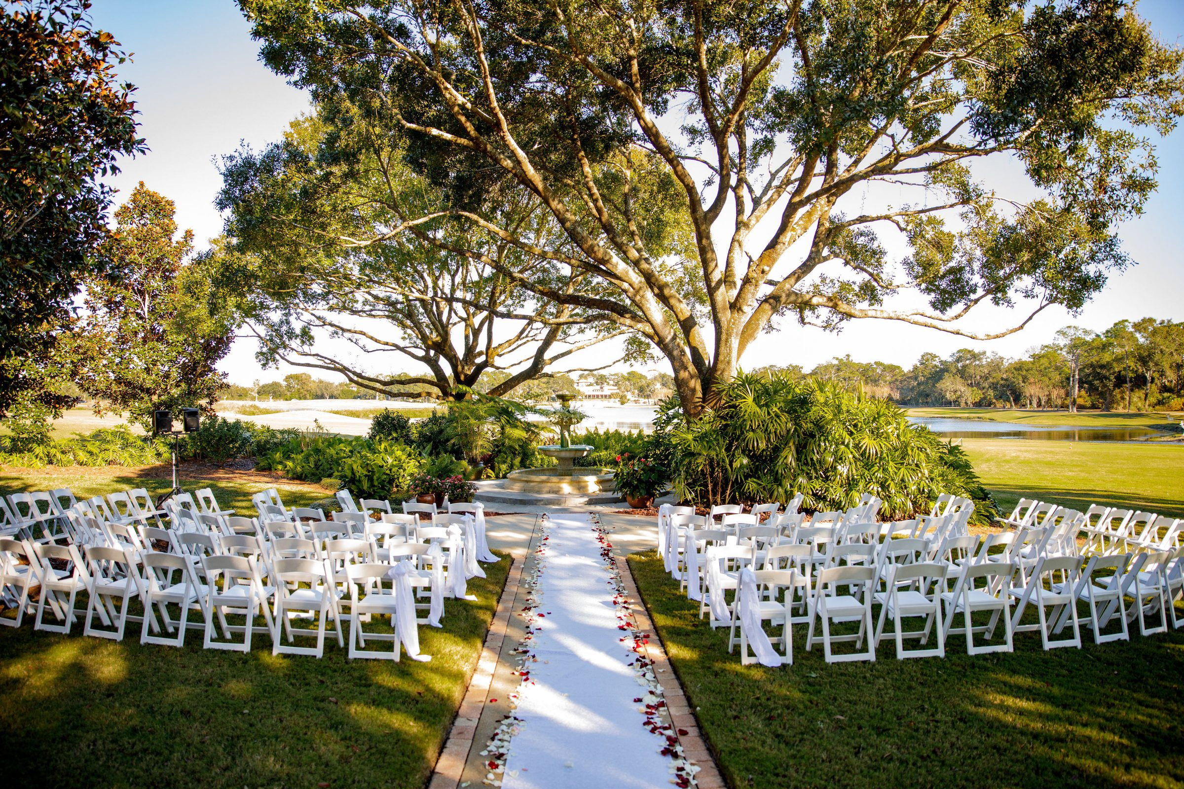 White chairs with white aisle and rose petals under an oak tree