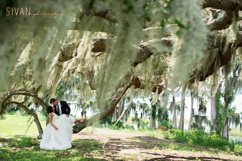 Bride laying on the branch of an oak tree surrounded by spanish moss next to her groom for gorgeous wedding portrait