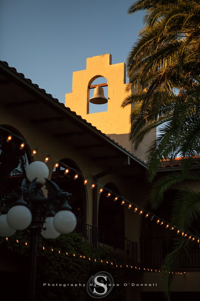 twilight bell tower picture with market lighting and Florida palm